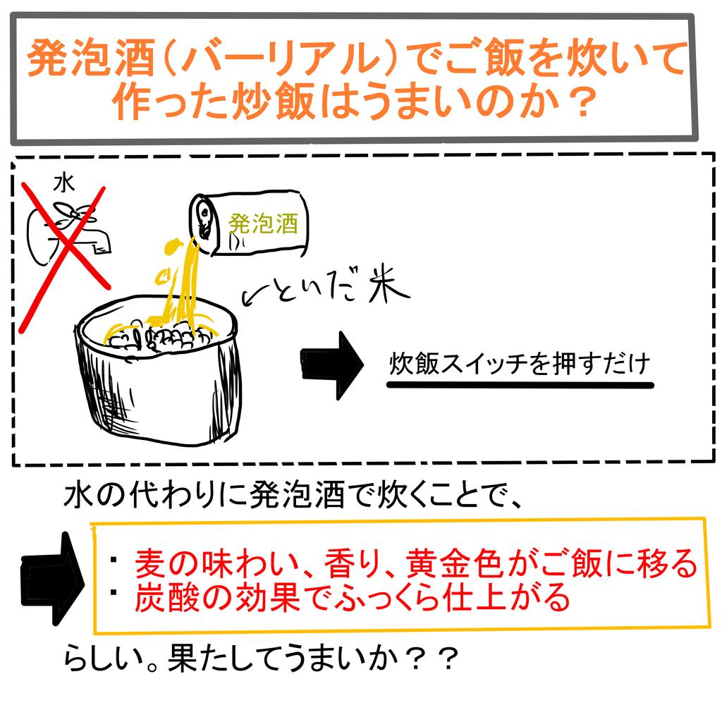 バーリアル炒飯.png